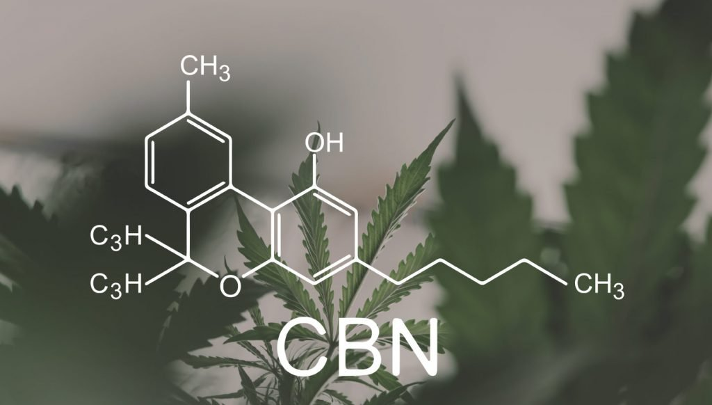 Co to jest kannabinol (CBN)?